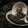 Coffee Monster web